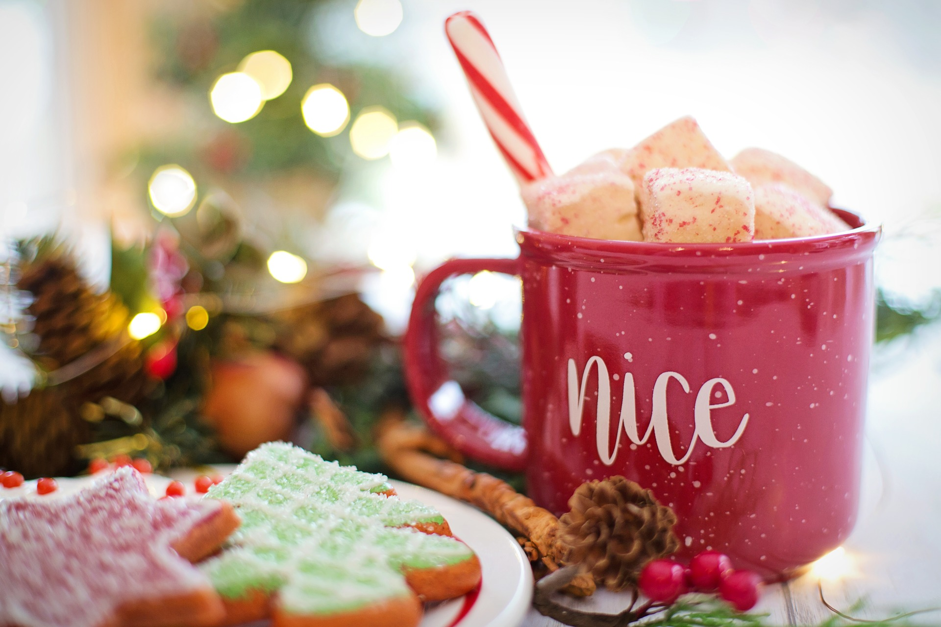 Clean & Pink Co winter spa treatments DIY holiday facial skin peels holistic health lifestyle brand Clean & Pink residential cleaning company hot chocolate recipe candy cane cranberry eggnog christmas recipes gingerbread peppermint.